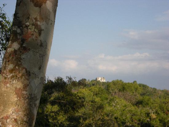 Peten, Guatemala: Temple 216