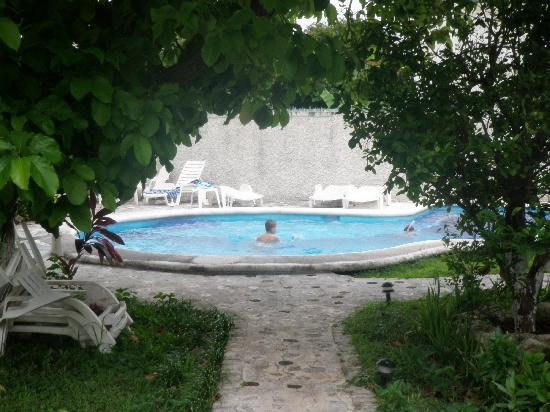Amigos Hostel Cozumel: Pool