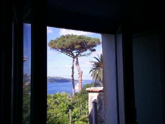 Sant'Agnello, Italy: How about that view of the bay.