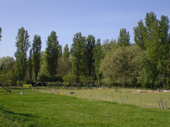 I prati ed il bosco di fronte a Borgovivo