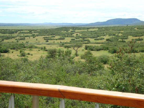 Mara Bushtops: view from our bed