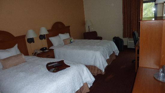 Hampton Inn Bonita Springs/Naples North: Doppelzimmer