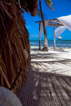 Pelican Reef Villas Resort: Serenity