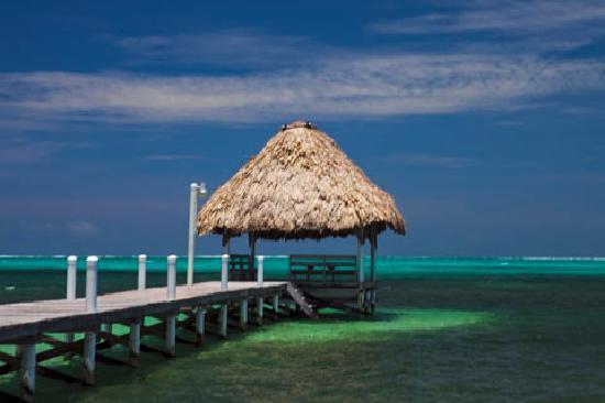 Pelican Reef Villas Resort: 350 ft pier with swimming reef
