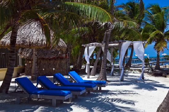 Pelican Reef Villas Resort: Padded loungers - plenty of shaded spaces and plenty places to sun