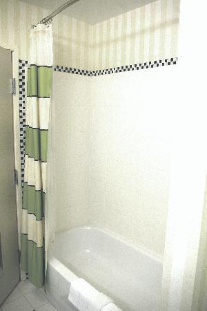 Fairfield Inn & Suites Carlisle: Bath