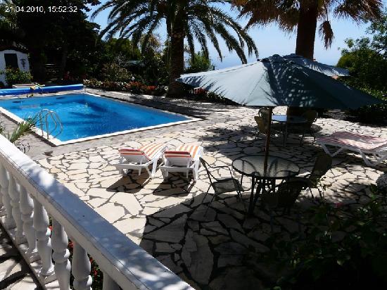 Jardin de Aridane: Aussicht vom Appartement El Hierro auf den Pool