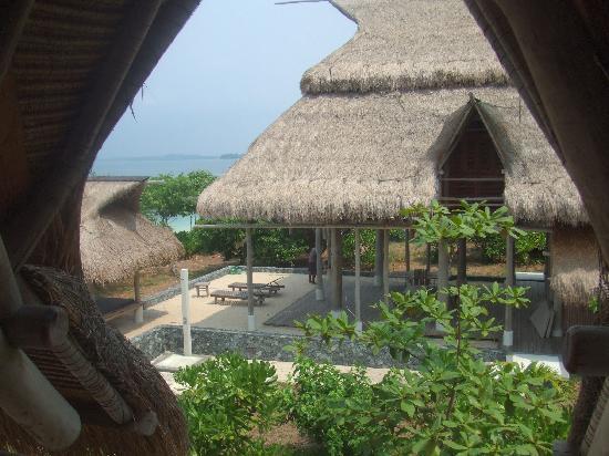 Nikoi Island: The Neighbours