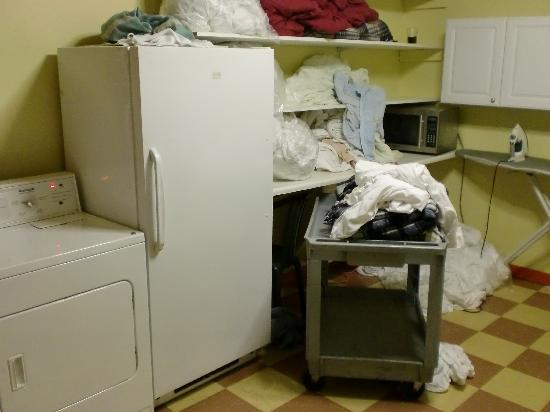 Elements Hostel : This is the kitchen/laundry room. Disgusting!