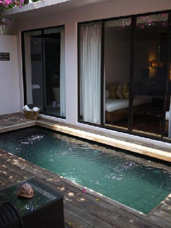 Abaca Boutique Resort: Pool inside the Villa