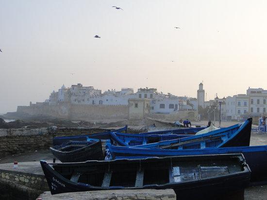 Riad Malaika: Essaouira -Early morning walk