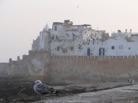 Riad Malaika: Morning in the medina