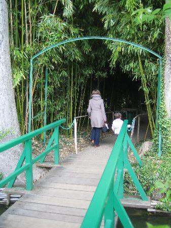 Claude Monet's House and Gardens: Seerosengarten Bambuswald