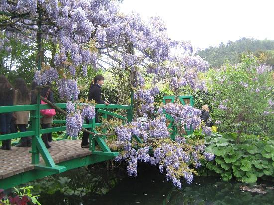 Claude Monet's House and Gardens: Seerosengarten