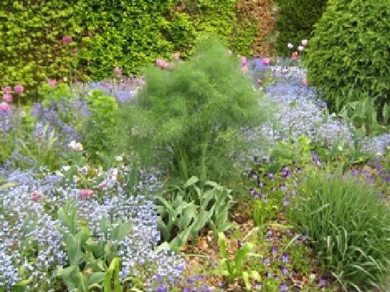 Claude Monet's House and Gardens: Bauerngarten