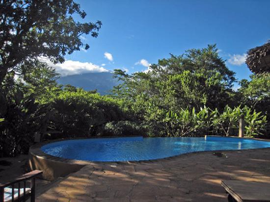 Kigongoni Lodge: Pool