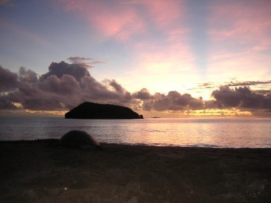 Nioumachoua Beach : Nioumachoi