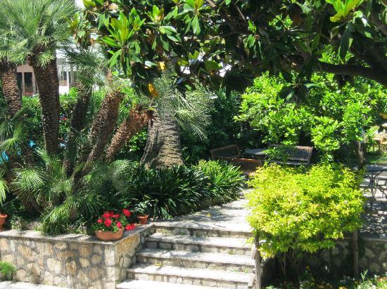 호텔 에덴 사진