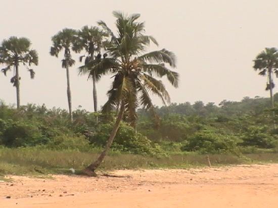 Busua Waves Resort : incredible scenery