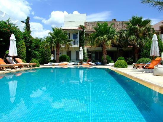 Sah Hotel: Stunning pool and gardens