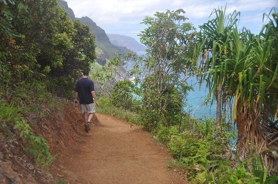 Kalalau Trail: A typical coastal stretch.