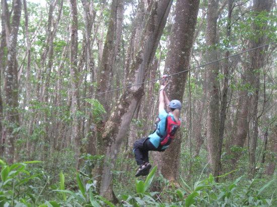 Big Island Eco Adventures II Zipline Canopy Tour: Weeeee!