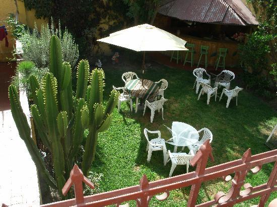 Arequipa Hostel Tambo Viejo B&B: The garden