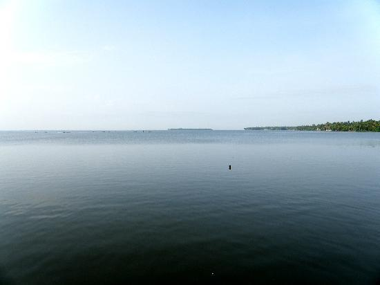 The World Backwaters: Lake view from resort