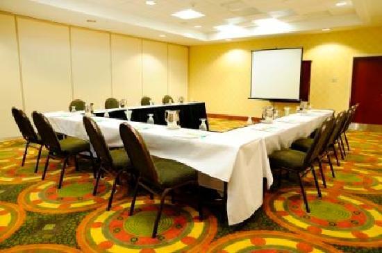 Holiday Inn Richmond South-Bells Road: Business Meetings