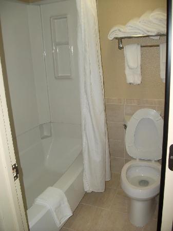 BEST WESTERN Executive Hotel: Clean Bathroom