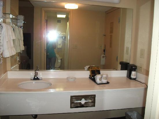 Best Western Executive Hotel: Adequate Vanity