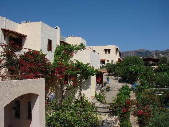Elounda Heights Apartments and Studios: La propriété