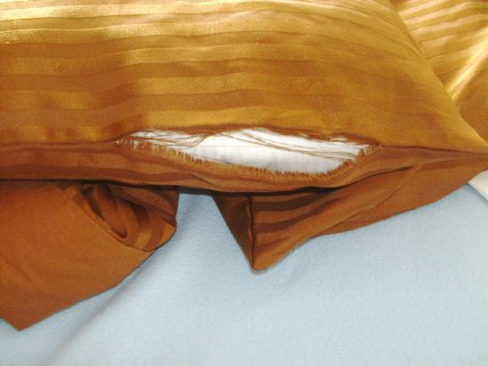 Conley Resort: Pillow cases were torn