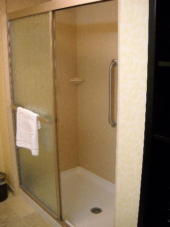 Hampton Inn Ellsworth / Bar Harbor: The Shower, no bathtub...