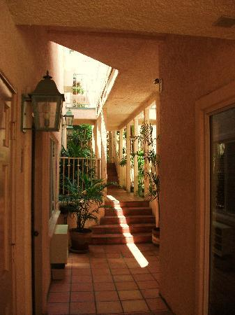 Casa Mariquita Hotel: Tropical Hallways