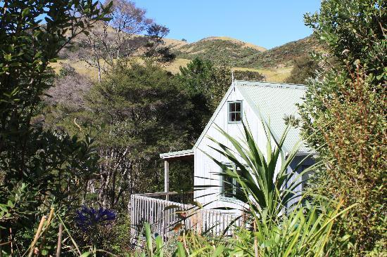 Te Mata Lodge: Chalets are private, nestled in the native bush
