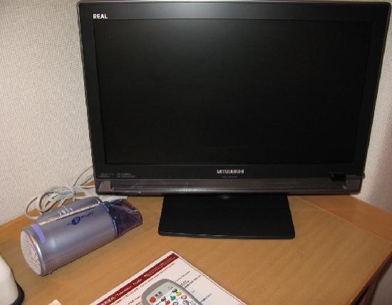 Grace Inn Nagoya : 薄型テレビも導入