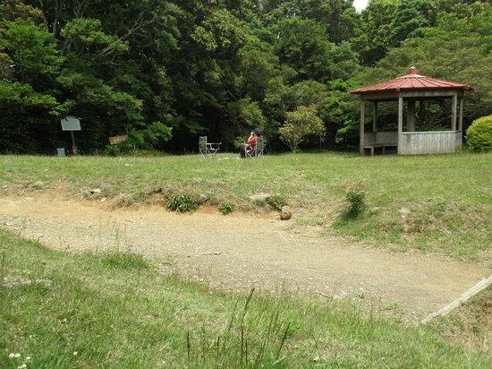 Ashigara Toge Joshi Park