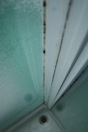Casalgallo: Muffa sui montanti della doccia in bagno