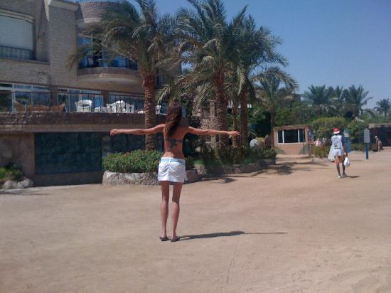 Hurghada SeaGull Beach Resort: beatifull and big territory))