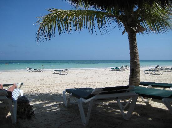 Island Seas Resort: On the beach at the resort.