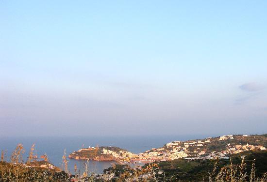 Il Gabbiano B&B : la vista del porto da Gabbiano