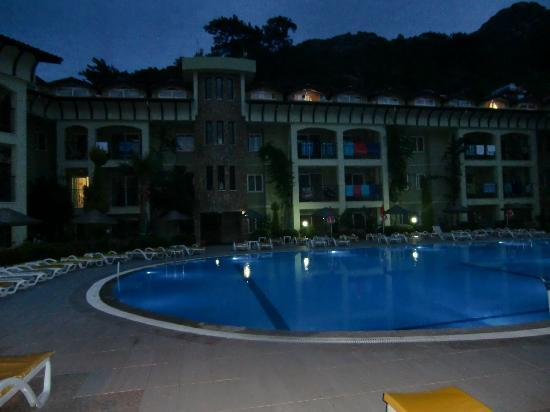 Palm Garden Apartments: The pool at night.