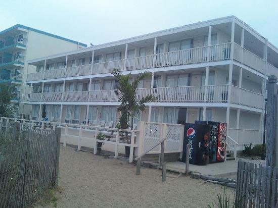 Seabonay Motel: Back view, coming from off the beach