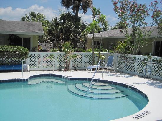 An Island Getaway at Palm Tree Villas: Pool