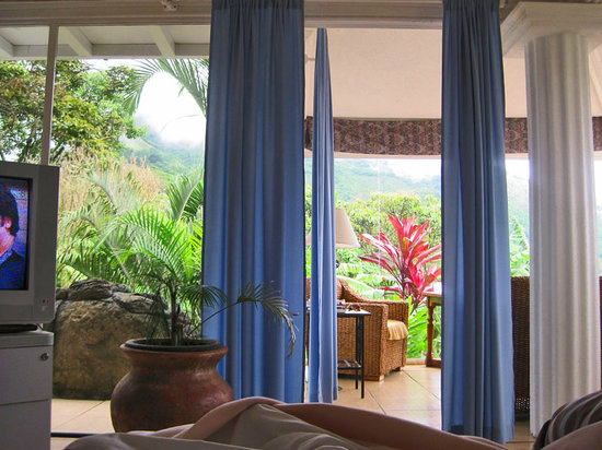 Villa Le Mas: View from my bed in Villa Glass Studio