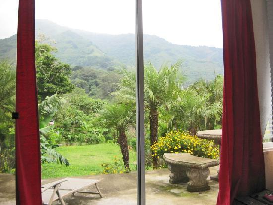 Villa Le Mas: View from my bed in Villa Joop
