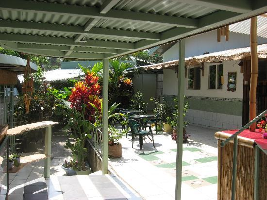 Rainforest Dreams Bed & Breakfast: Courtyard