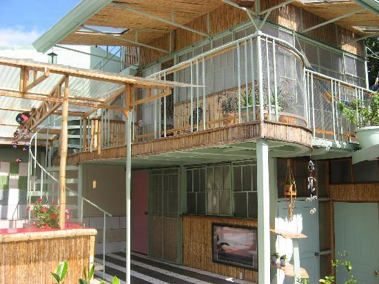 Rainforest Dreams Bed & Breakfast : Pet Friendly Rooms