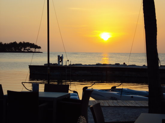 TJ's Tiki Bar: view from the bar